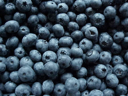 färska blåbär laxerande