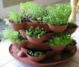 S genialt en smultronkruka med kryddodling i rakapuckar - Herb gardens for small spaces gallery ...